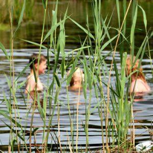 Zwemmen 1